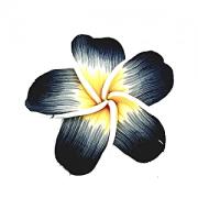 Kraal Fimo Hawaii 60mm Grijs