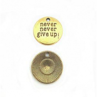 Bedel goud Never give Up