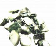 Schelp-Kralen-13-25mm-Groen