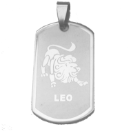 Ketting Stainless steel Leeuw